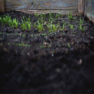 Soil & Mulch Calculator