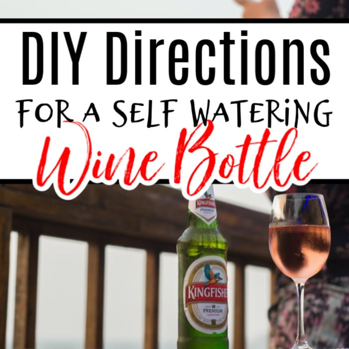 Need to take a few days away but don't know what to do about your garden? Try this fun, inexpensive, crafty way to get the job done with left over wine bottles.  Click through NOW to learn how...
