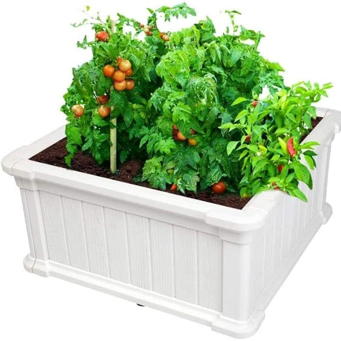 planter box filled with veggies