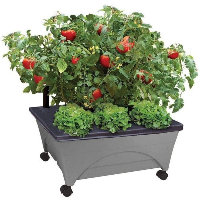 rolling vegetable planter