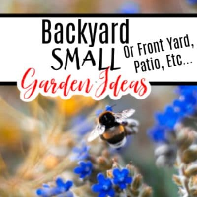 Backyard Small Garden Ideas Or Front Yard, Patio, Etc…