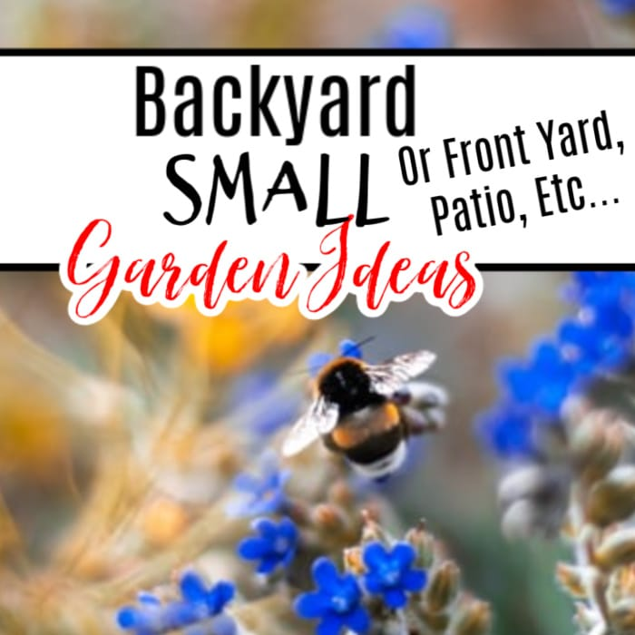 If you're looking for ways to start a garden in a small space, then these Backyard Small Garden Ideas are just the ticket! Click through NOW to check out these Small Garden Ideas....