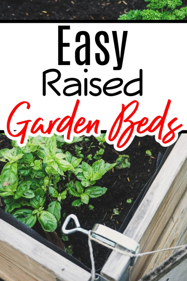 Thinking of trying a raised garden bed? Whether you want to know how to build a raised garden bed, or you would prefer a raised garden bed kit, we have you covered.  Click through NOW to see all your options....