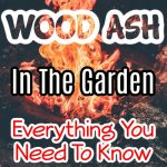 Wood Ash In The Garden Everything You Need To Know (1)