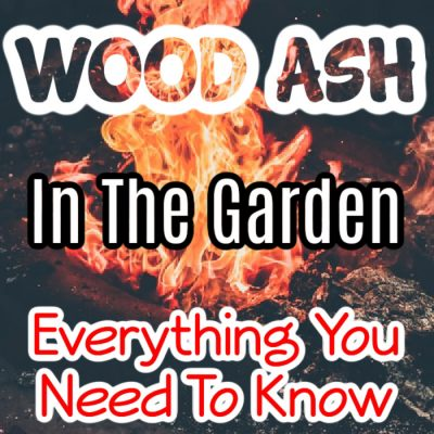 Wood Ash In The Garden Everything You Need To Know