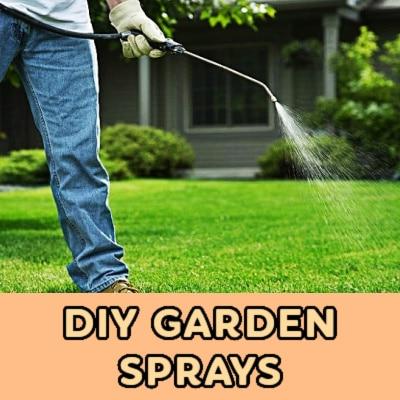 DIY Garden Sprays