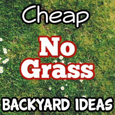 Cheap No Grass Backyard Ideas (Or Front Yard)