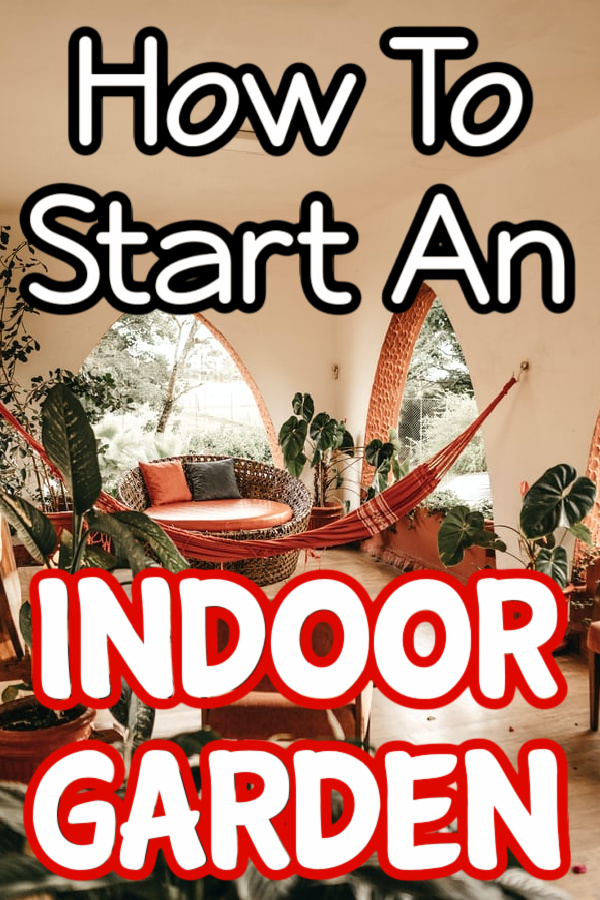 Thinking of starting an indoor garden?  Make sure you read this first.  Click through NOW to learn more about how to start an indoor garden...